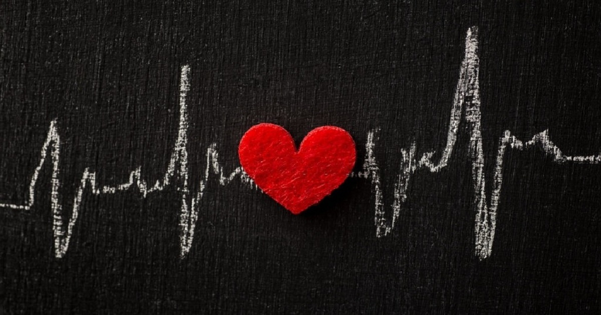 People Are the Pulse of Your Organization: How to Keep a Healthy Heart Rate
